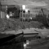 Pinhole-Negs-Edif3